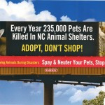 Spay/Neuter Billboards